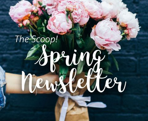 the-scoop-spring