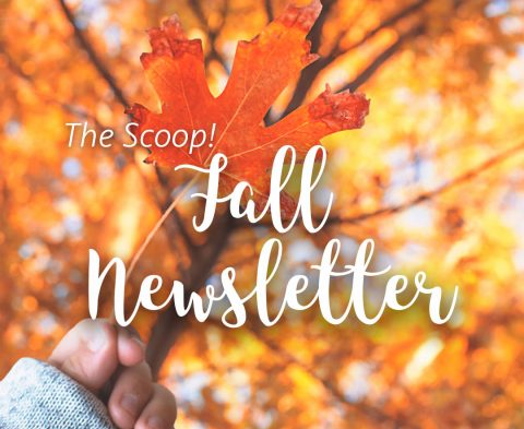 the-scoop-fall